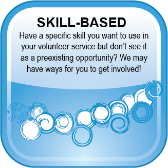 Volunteer Web Button Skill