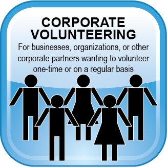 Volunteer Web Button Corporate